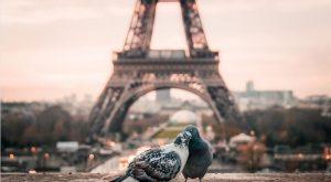Paris St Valentin